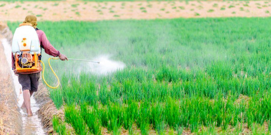 پیشینه تاریخی سموم کشاورزی