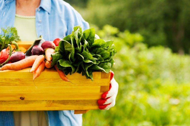 اندازه گیری باقیمانده سموم کشاورزی به روش کچرز